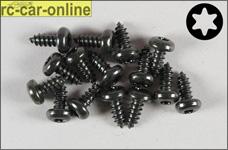 6916/09 FG Linsen-Blechschraube mit Torx 4,2x9,5 mm, 15 Stück