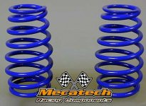 2009-02 Cask shaped springs for Mecatech Klick-Shocks and Bi
